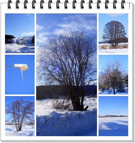 Vacker februaridag